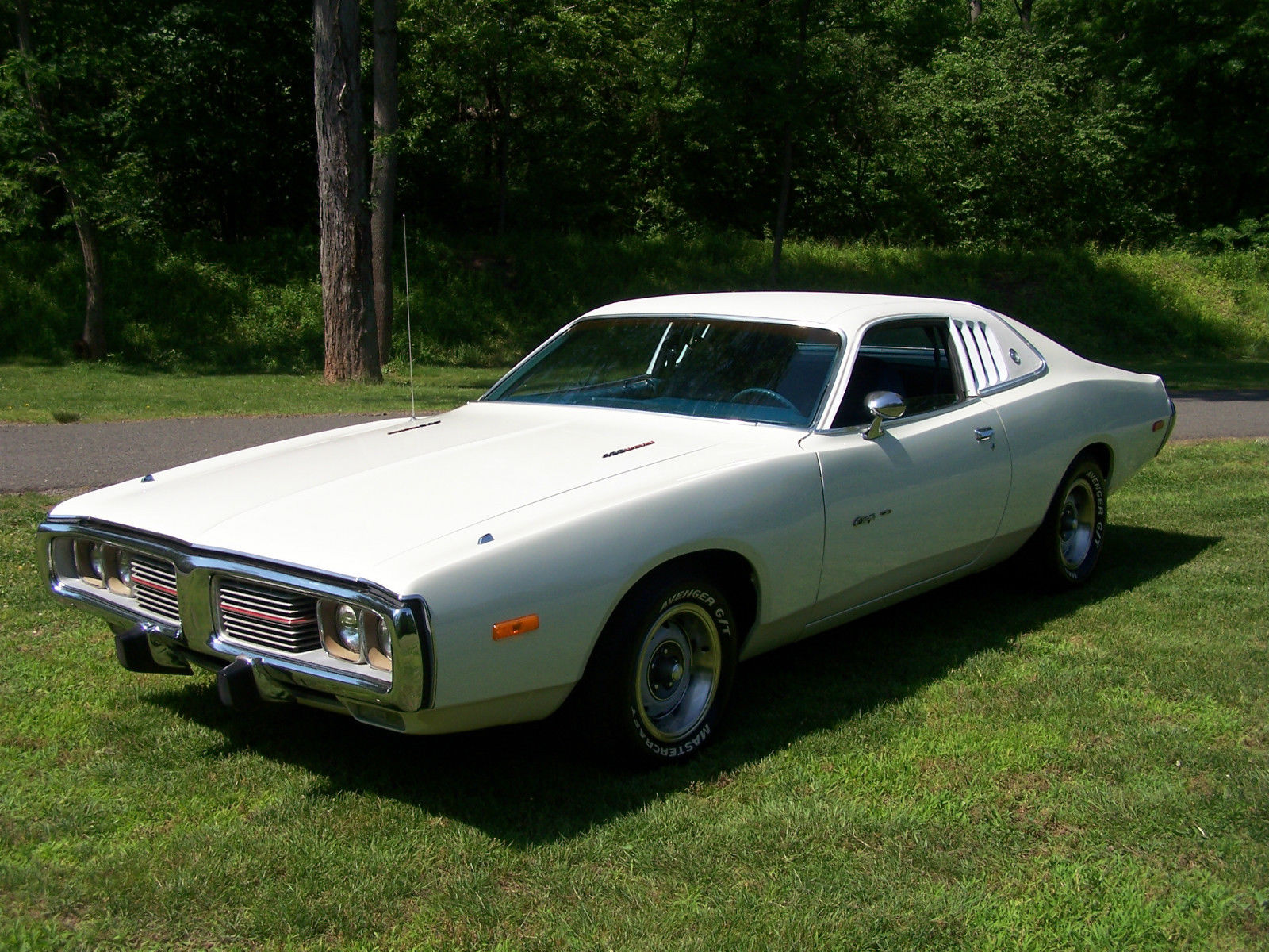 1974 DODGE CHARGER LE2