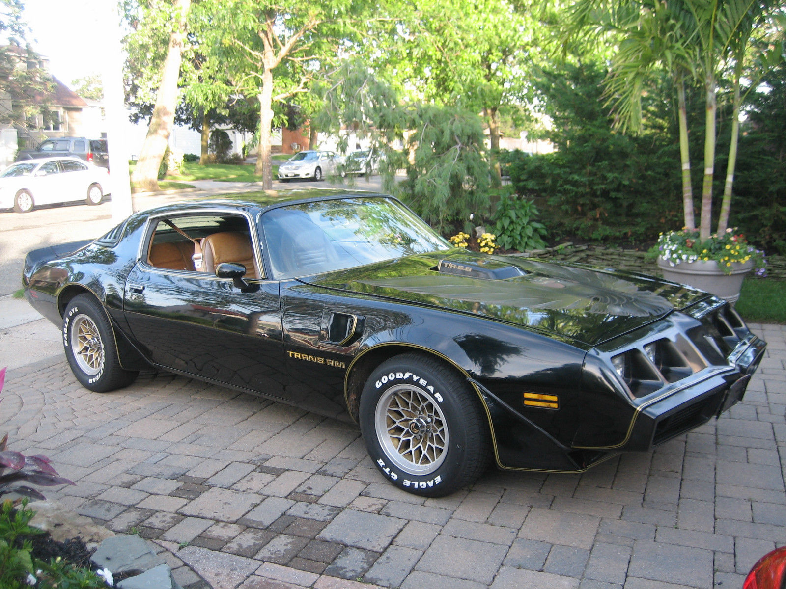1979 Pontiac Trans Am Trans am WS6 TA 6.6L 400 4 speed-133