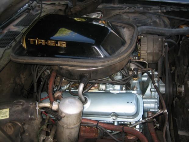 1979 Pontiac Trans Am Trans am WS6 TA 6.6L 400 4 speed-11