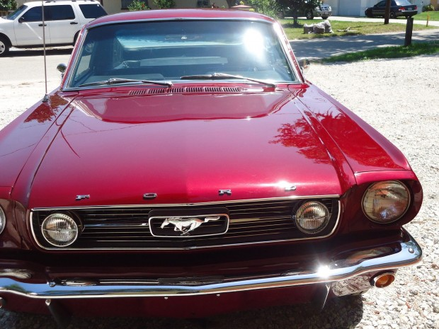 1966 Ford Mustang gt fastback-1445435