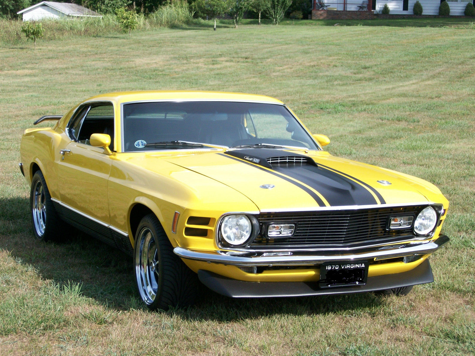 1970 ford mustang mach 1 521 stroker super cobra jet. Black Bedroom Furniture Sets. Home Design Ideas
