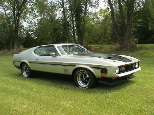 1971 Mustang Mach 1-1