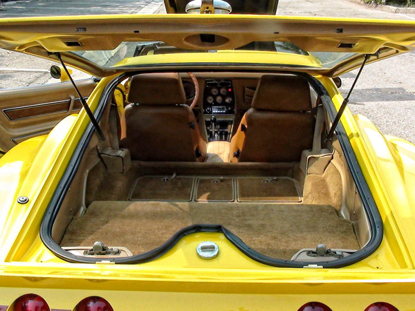 1975ChevroletCorvetteeckler-ergflkhu55