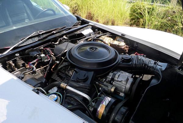 1978ChevroletCorvette-fgiug12