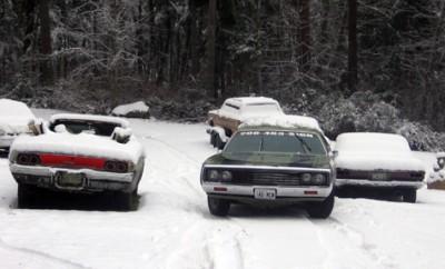 snowjoke