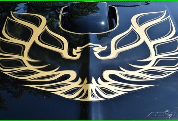 1976-Pontiac-Trans-Am-Special-Edition-Bandit-Style-1456456