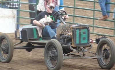 Pig n Ford racing
