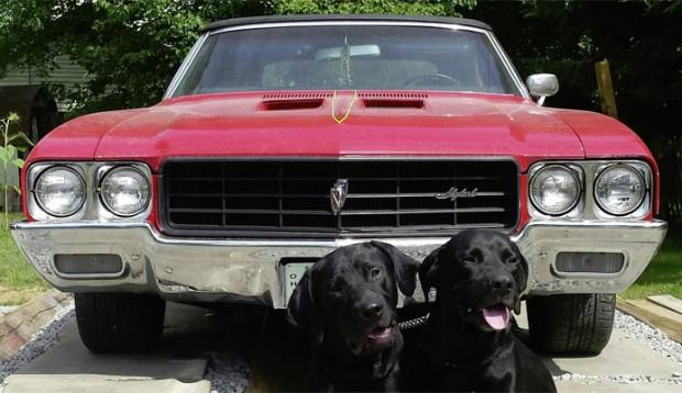 1970-Buick-Skylark-GSX-455-154