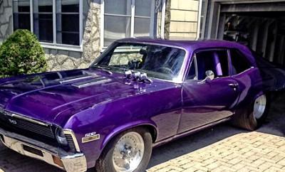 Purple-Haze-Nova-SS-1567
