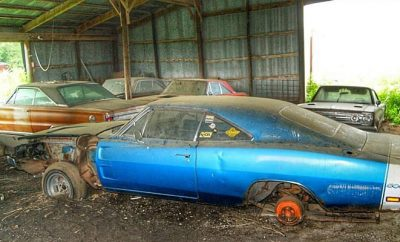 barnfinds-456456