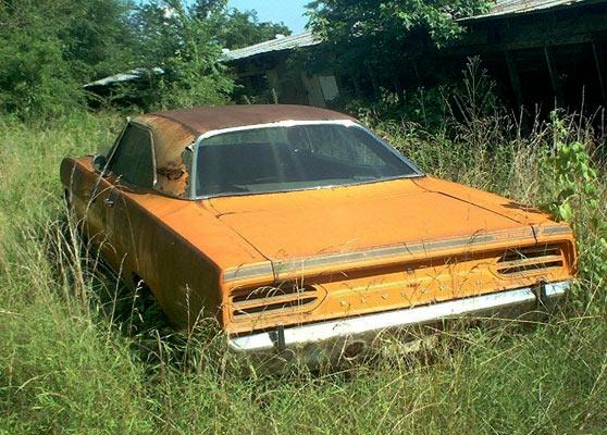 roadrunner-456564