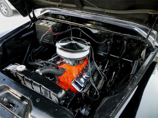 1955-chevrolet-pickup-3100-246534545