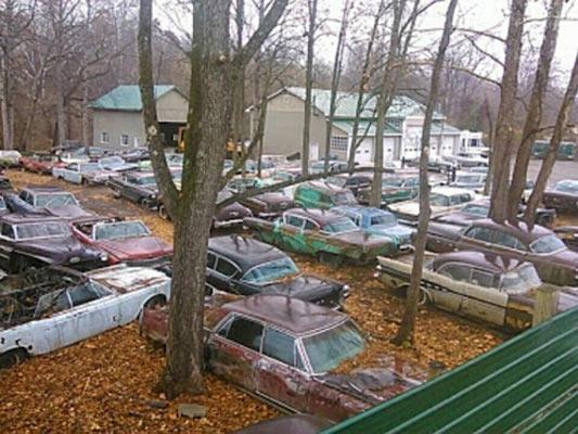 junkyard-5465