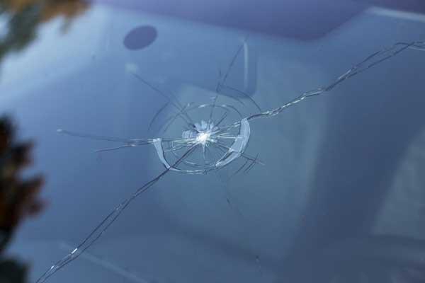 windshield-