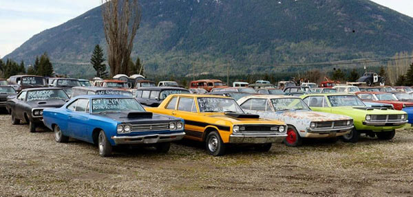 Five Acres Of Muscle Cars For Sale in Canada - Muscle Car