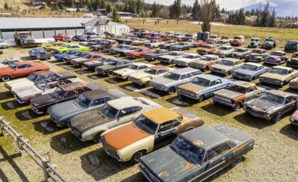 muscle car yard