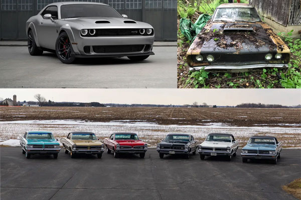 dodge and gtos Image