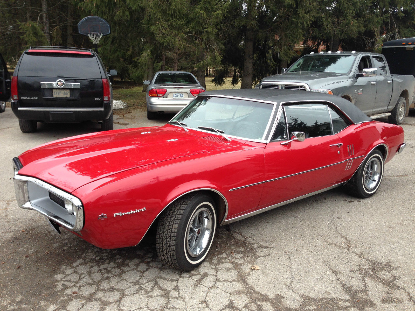1967 Pontiac Firebird3