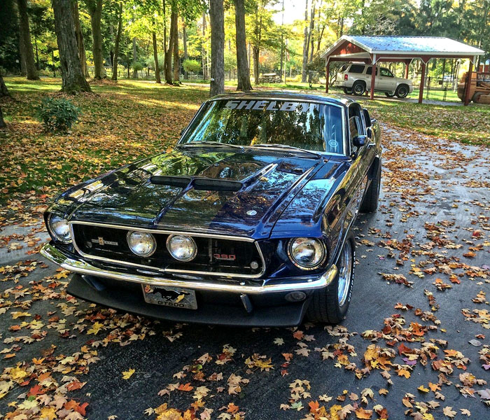 1968-Ford-Mustang-GT500-11