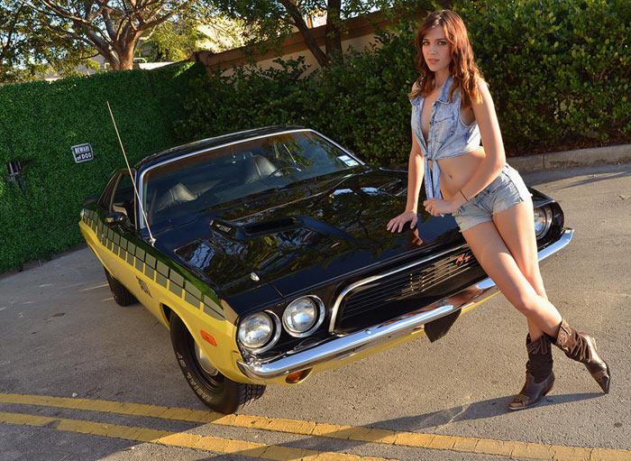 1973 Dodge Challenger 340 6 Pack, 425 HP