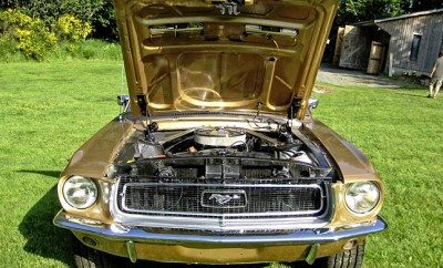 Mustang21