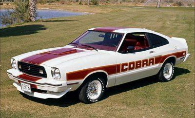cobra-54654
