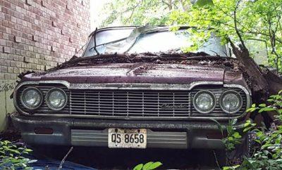 Impalass