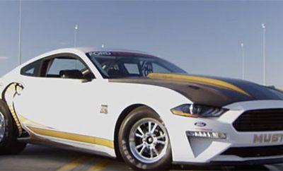 Mustang-Cobra